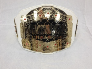 Edmonton BJJ Tournament Belt